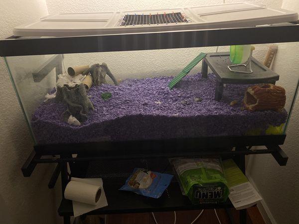 Hamster setup