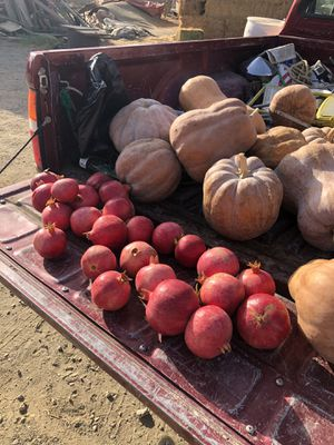 Pomagranes 3 for $1 for Sale in Bakersfield, CA