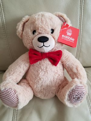Teddy Bear Brand New. Adoreable for Sale in Coronado, CA