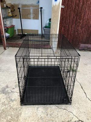 Large Dog Kennel for Sale in Longmont, CO