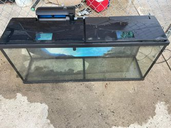 55 gallon tank $150 for Sale in Queens, NY