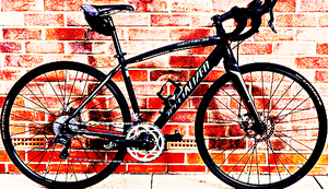 FREE bike sport for Sale in White Sulphur Springs, WV