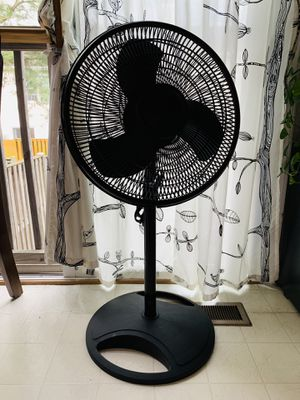 Black Oscillating Fan for Sale in Alexandria, VA