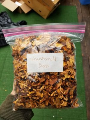 Dried Wild Mushrooms for Sale in Portland, OR