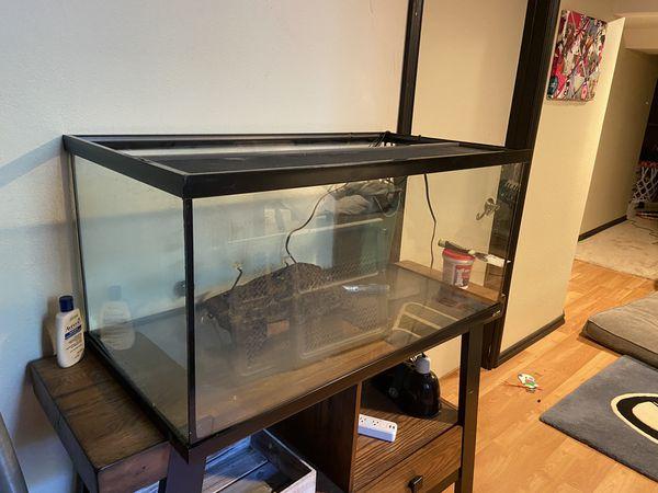 Large 40 gallon aquarium