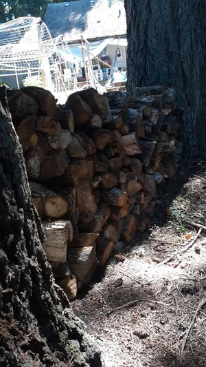 Seasoned Oak firewood. Split or millable chunks for furniture for Sale in Tigard, OR
