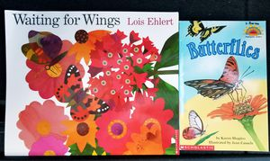 Set of 2 Butterfly Books for Sale in Chesapeake, VA