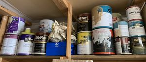 Free paint must take all for Sale in Everett, WA