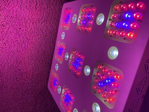 Diamond Series XML 350 LED Grow Lights for Sale in St. Petersburg, FL