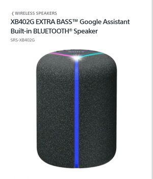 Sony SRS-XB402g Waterproof Bluetooth Speaker for Sale in Queens, NY