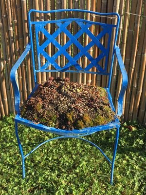 Iron Blue garden chair for Sale in Puyallup, WA