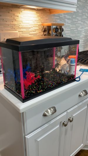 Fish tank (fish not included) for Sale in Wake Forest, NC