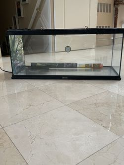 20 Gallon Reptile Tank With Heating Pad for Sale in New City,  NY
