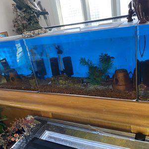 Aquarium Fish Tank Breeding Tank for Sale in North Tustin, CA
