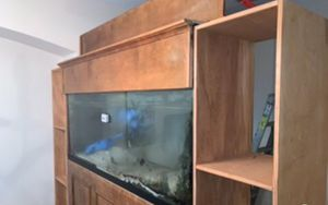 170 gallon Saltwater Fish Tank for Sale in Orlando, FL