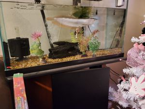 Two fish tanks for Sale in Fairfield, CA