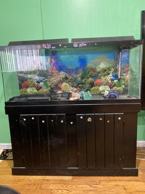 55 gallon aquarium with wooden cabinet for sale for Sale in Queens, NY