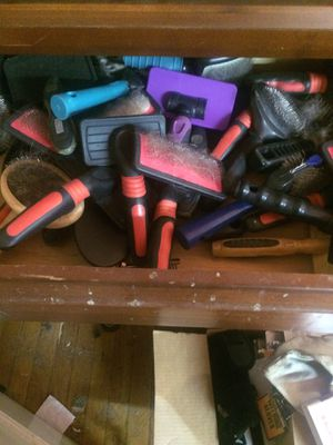 All diff kinds of dog grooming brushes for Sale in Chicago, IL