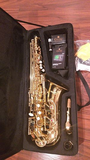 Mendini sexaphone like new for Sale in Lexington, KY