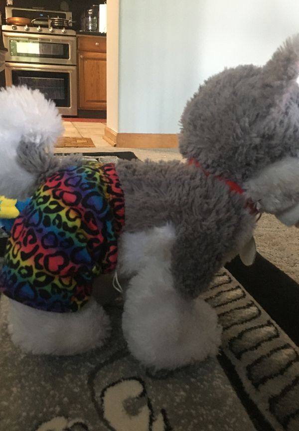Build-a-bear workshop Husky plushie