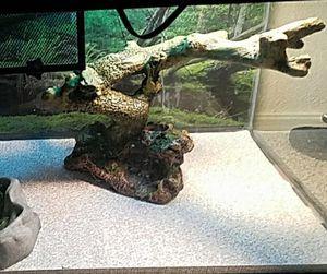 reptile supplies for Sale in Wichita, KS