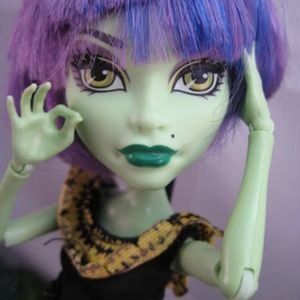 Monster High Doll Ice Girl CAM for Sale in Hialeah, FL