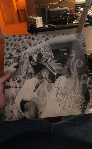 BJORK VINYL 2 LP SET for Sale in Nashville, TN