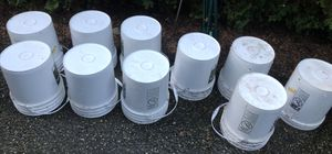 Pickle Buckets 5 Gallon Volume 7 No Holes, 3 Have Holes for Sale in Renton, WA
