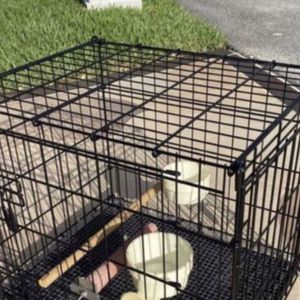 Parrot, Bird or Medium Size pet transfer cage for Sale in Miami, FL