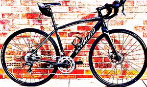 FREE bike sport for Sale in McClure, OH
