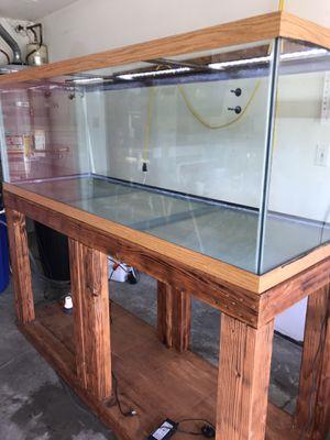 180 gallon tank stand lights sump skimmer for Sale in Marysville, WA