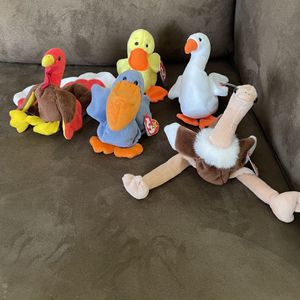 Beanie Baby Bird Collection for Sale in Lake Worth, FL