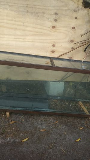 Real big fish tank for Sale in Tampa, FL
