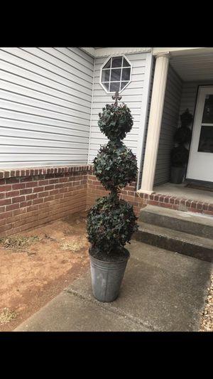 Topiary for Sale in Nashville, TN