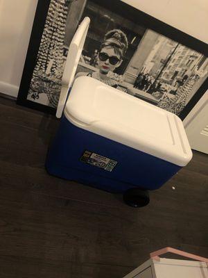 Cooler for Sale in McLean, VA