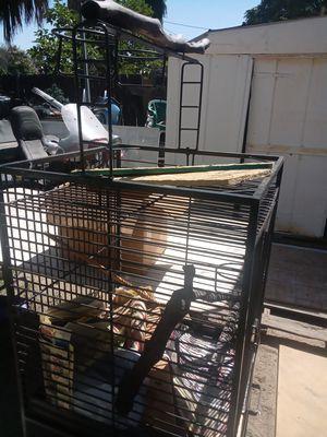 Lage bird cage for Sale in Hemet, CA