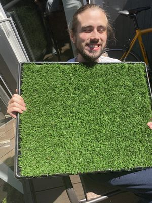 Artificial grass bathroom for dogs for Sale in Portland, OR