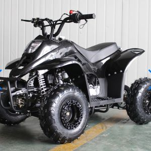 110cc Gas ATV DF110AVA Kids ATV With 6inch Wheel, Electric Start, Remote Shut Off Switch DESCRIPTION Young ones will find this 110cc ATV easy to drive for Sale in Gardena, CA