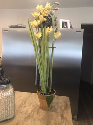 Two ORCHID SILK PLANTS 💛💛 for Sale in Las Vegas, NV