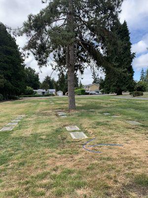 Cemetery Plot for Sale for Sale in Burien, WA