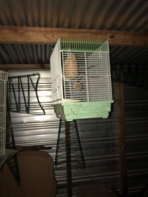 Bird cage for Sale in Brandon, MS