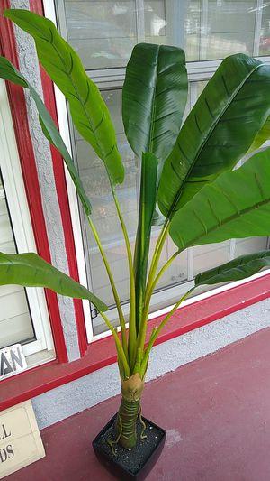 Fake indoor plant for Sale in Altadena, CA