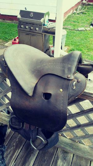 Buena Vista and english saddles for Sale in Knoxville, TN