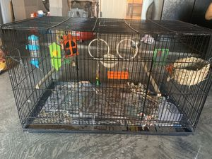 Bird, hamster cage for Sale in North Richland Hills, TX