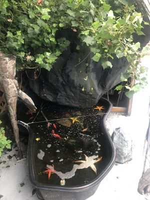Huge outdoor water fountain pond for Sale in Tacoma, WA
