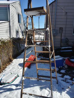 Werner solid ladder for Sale in Kansas City, MO