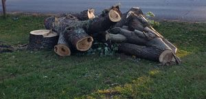 Fire wood for sell for Sale in Murfreesboro, TN