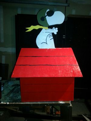 Custom dog houses for Sale in US
