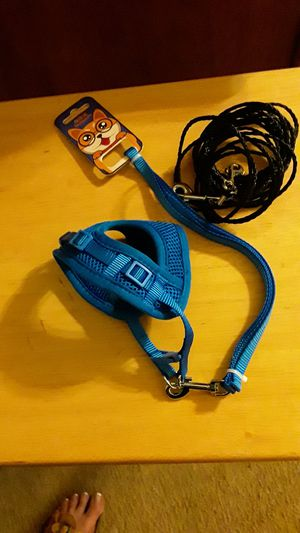 Cat Harness w/Lead & Cat Tie Out for Sale in Prince George, VA