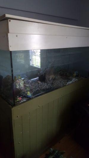 Big fish tank for Sale in Dallas, TX